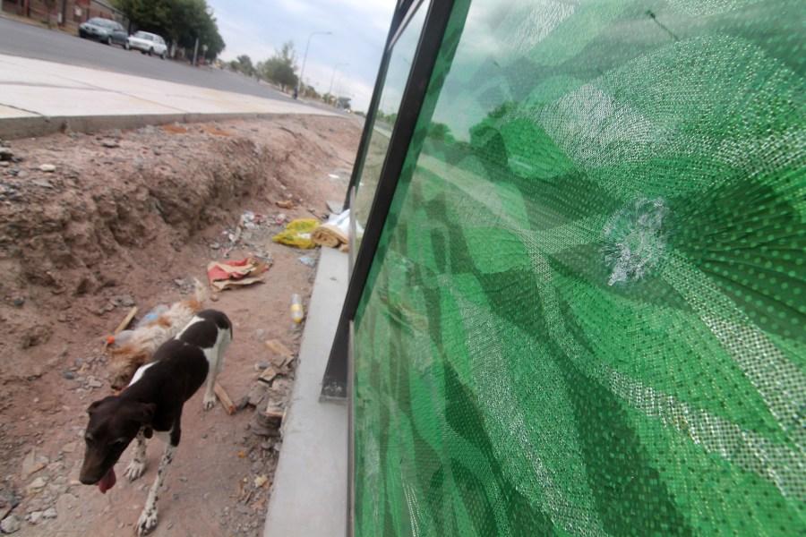 El grueso vidrio fue agujereado con piedras el fin de semana. Foto: Oscar Livera