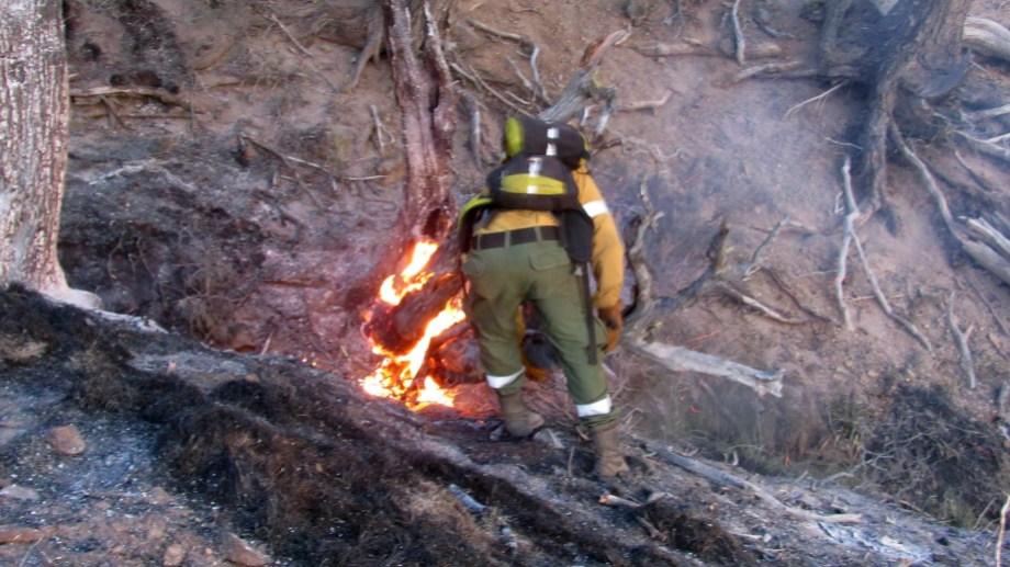 El gremio ATE advierte un eventual cambio de cartera para el Splif, el servicio que combate incendios forestales. Archivo