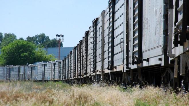 El tren busca disminuir la cantidad de camiones que circulan por las rutas.