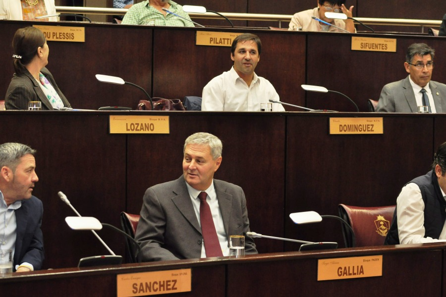 Los diputados en sus bancas durante la sesión ordinaria.  Foto: Juan Thomes