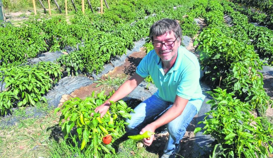Daniel Cortés, coordinador del Centro de Formación Agropecuaria N° de Plottier.