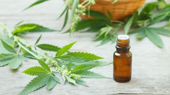 Osecac deberá proveer cannabis medicinal a un niño de 6 años de El Bolsón. Foto: archivo