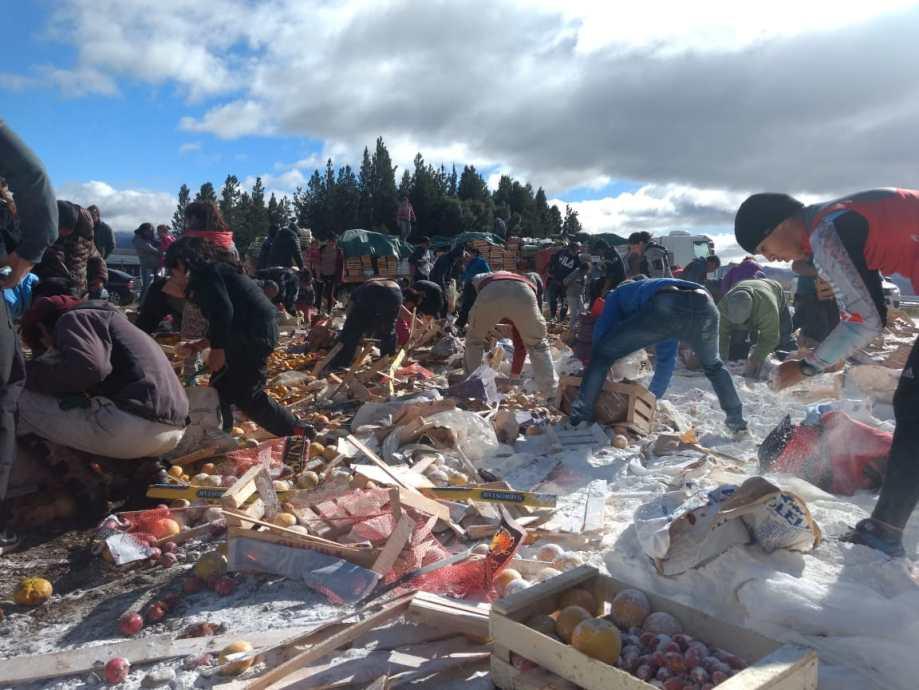 Se llevan los alimentos que cayeron de un camión en la ruta 40