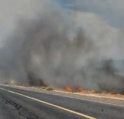 El fuego comenzó a la altura del kilómetro 1505 de la ruta 237.