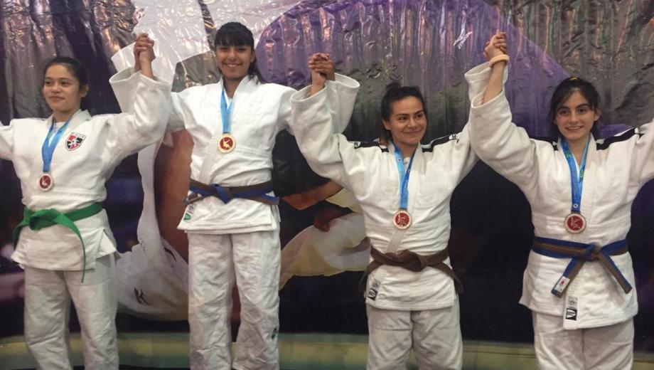 Río Negro se quedó con el Torneo Nacional de Judo en Bariloche. Foto: gentileza