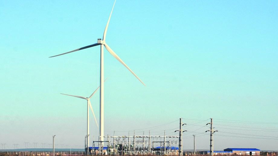 Ciento veinte metros de alto. Los molinos llevan su energía a la planta transformadora.