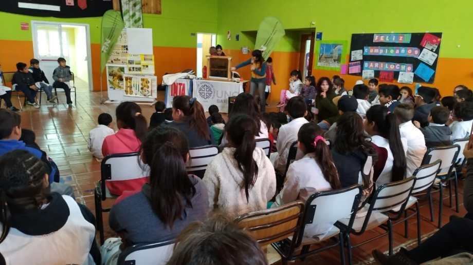 Las visitas realizadas a las escuelas 310, 278, 325 y 328 comenzaron con una charla sobre la abeja, su importancia en la polinización y los beneficios del consumo de miel. Foto: gentileza