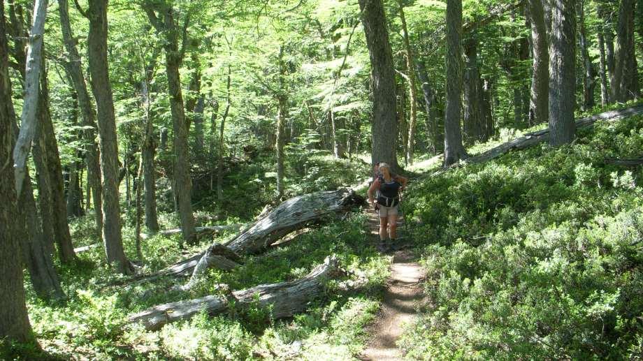 El alerta se dispuso para senderos de trekking y bicicletas. (Archivo)