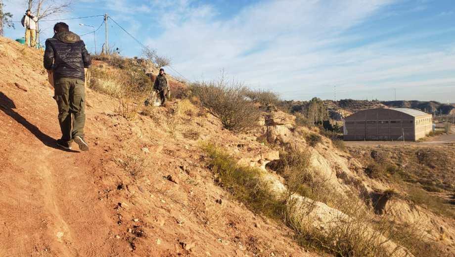 """Los restos fósiles de un dinosaurio fueron hallados en cercanías al gimnasio """"Roberto Monteros"""", conocido como """"El Escondido"""". (Gentileza).-"""