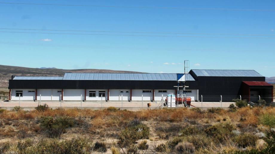 El gobierno acondiciona la planta de faena de truchas en Rincón Chico para otorgarle valor a la producción de peces. Gentileza Neuquén Informa