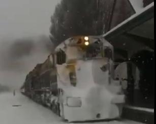 El Tren Patagónico sorteó la nieve y llegó a Bariloche.