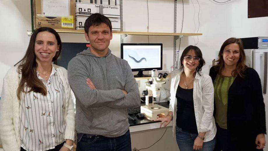 El equipo de trabajo que logró el avance al estudiar durante cuatro años los procesos de una especie de gusanos.