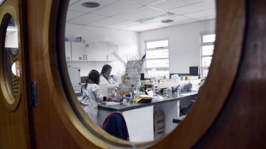 Varios investigadores también fueron reconocidos en el ranking. (Foto: Archivo)
