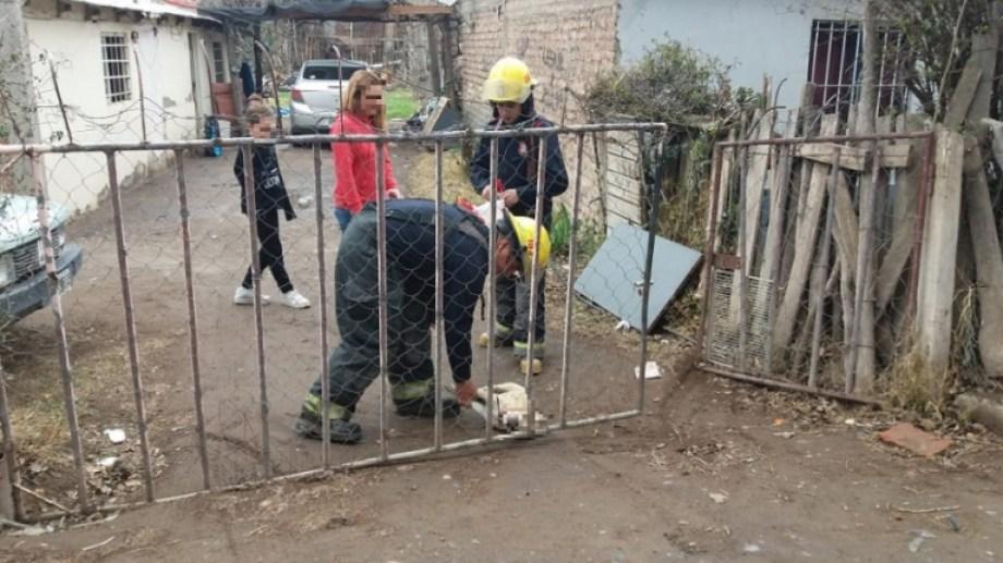 La mascota de la familia murió cuando tocó el portón de la vivienda, que estaba electrificado. (Gentileza Centenario Digital).-