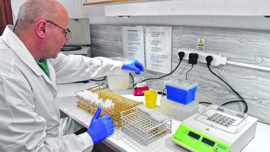 Hasta el último detalle se analiza en el laboratorio que tuvo que hacer una gran inversión para sumar análisis específicos.