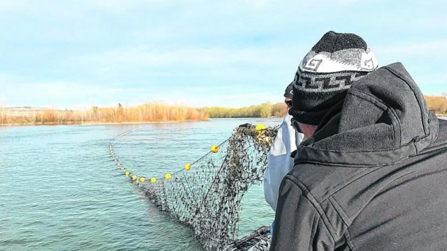 Pesca: buscan asegurarse que en los próximos años se pueda contar con este importante insumo turístico.