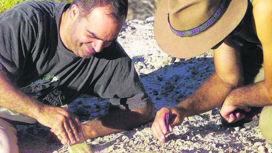 Según Novas, los paleontólogos argentinos entraran en las discusiones de grupos internacionales acerca del origen de estos animales.