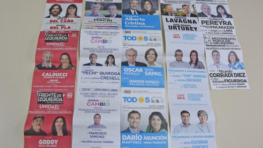 Listas que resultaron habilitadas luego de las PASO foto (Juan José Thomes)
