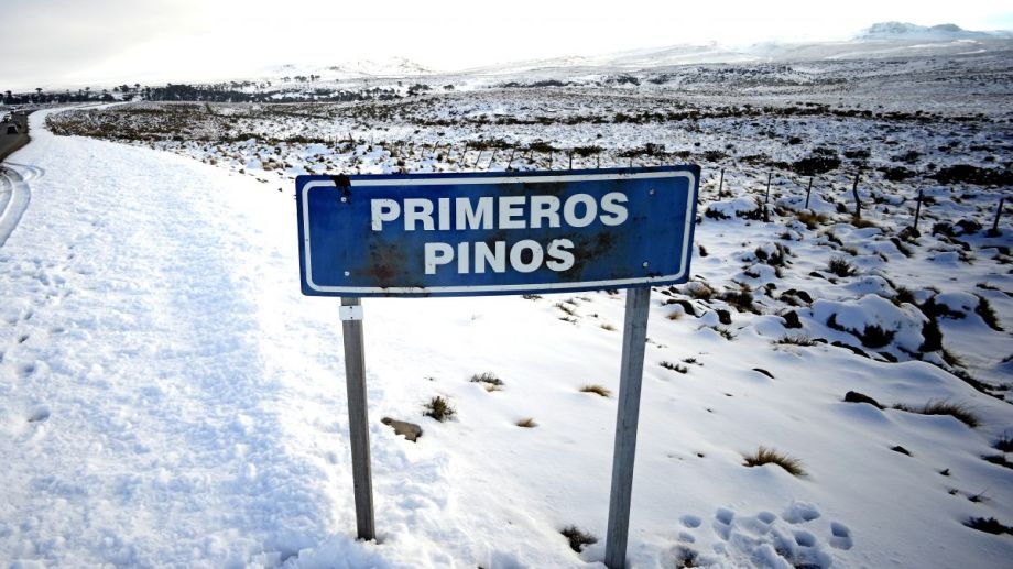 La ruta 13 va desde Primeros Pinos a Villa Pehuenia.  Foto: Archivo Mauro Pérez