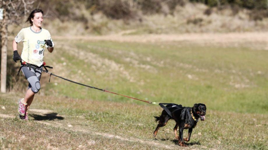 """La carrera con mascotas, o """"cnicross"""" será el domingo por la mañana en La Herradura. (Gentileza).-"""