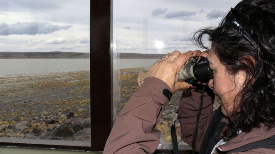 Avistaje de aves en Laguna Blanca.