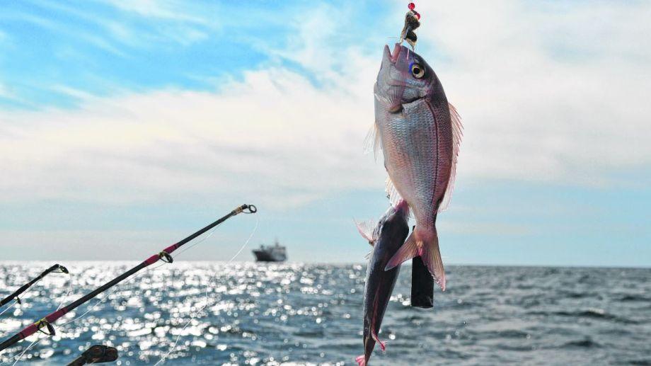 San Antonio. O la maravilla de pescar embarcados en el mar.  Martín Brubella