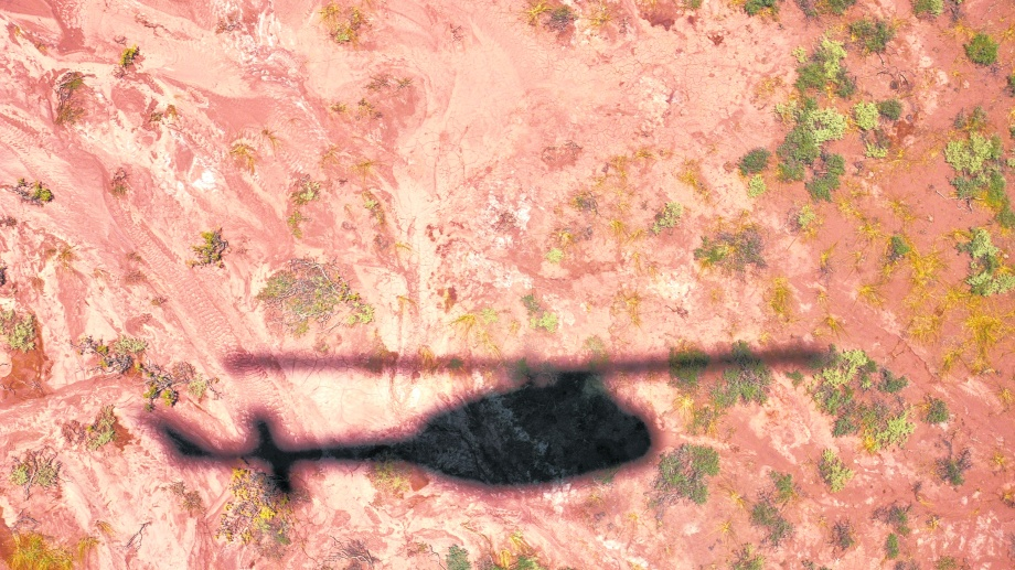 Helipatagonia se llama la firma aérea de Lewis.