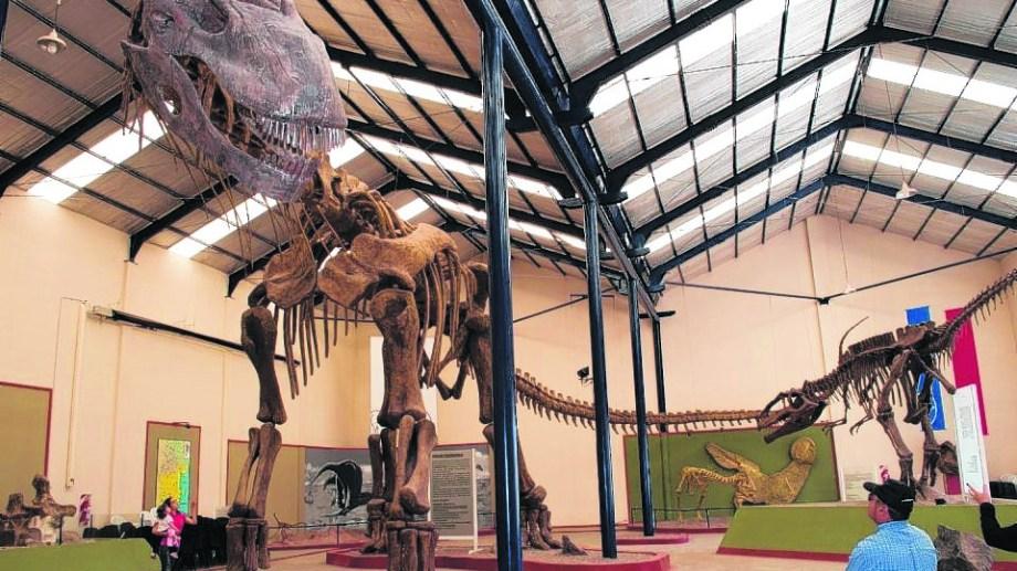 El Argentinosaurio es el fósil de uno de los herbívoros más grande del mundo y se exhibe en el Carmen Funes de Plaza Huincul. Foto: Archivo
