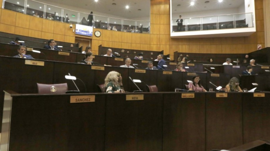 La sesión legislativa de este miércoles aprobó un trámite exprés para cambiar la ley de bosques. Foto Juan Thomes