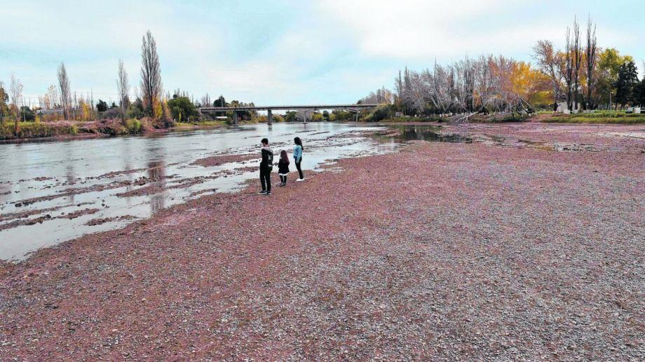 Habrá problemas de riego para Buenos Aires y Río Negro.