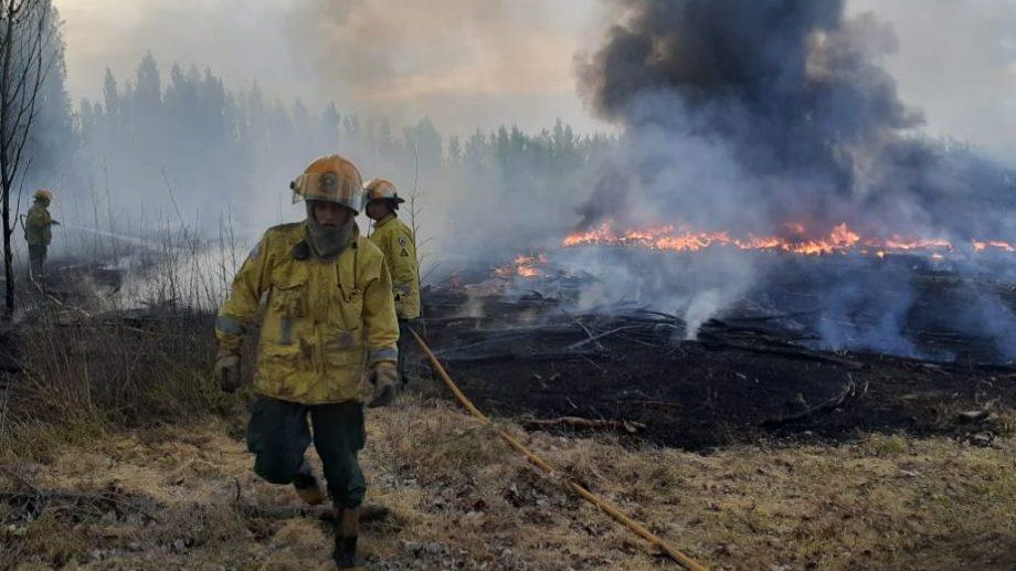 Los bomberos atendían la situación y controlaban que no hubiera un nuevo foco. (Foto: Pablo Acinelli)