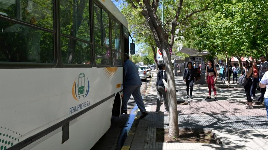 Exigen a Di Tella mejoras en el transporte urbano en Cipolletti. (Foto archivo)
