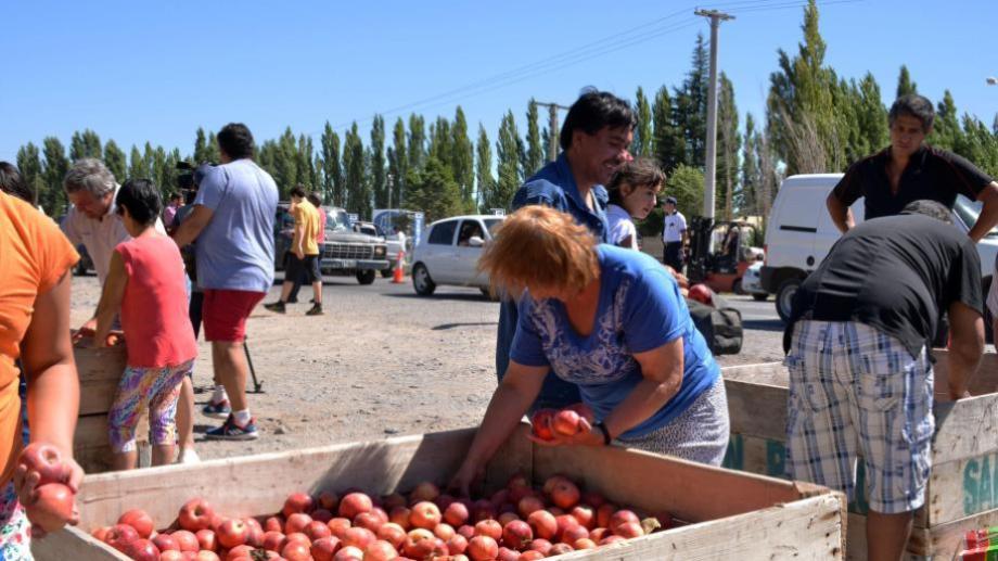 Chacareros regalarán manzanas en Cipolletti. (Foto archivo)