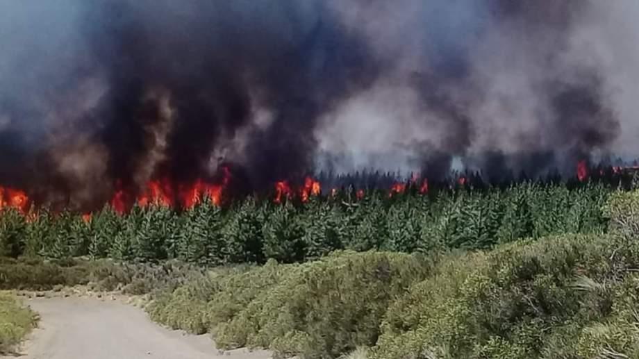 Recientemente se desató un incendio forestal entre Loncopue y Caviahue. (Foto Gentileza Facebook Luis Tapia).-