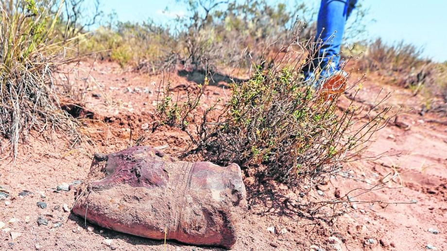 Una bala de cañón de 105 milímetros detonada se puede ver al descubierto en plena superficie. Foto Juan Thomes.
