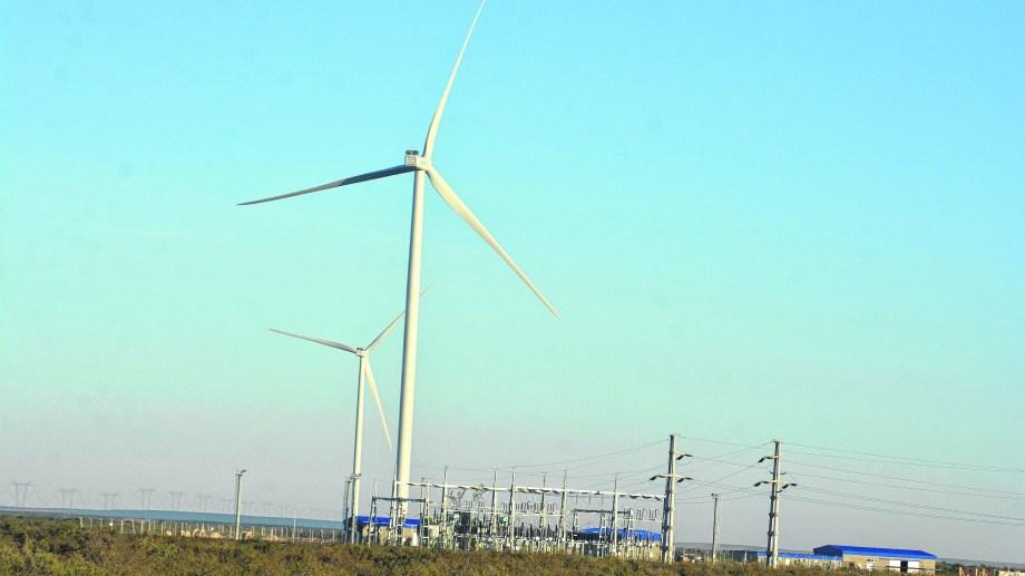 El parque eólico de Pomona genera energía limpia desde el año pasado.