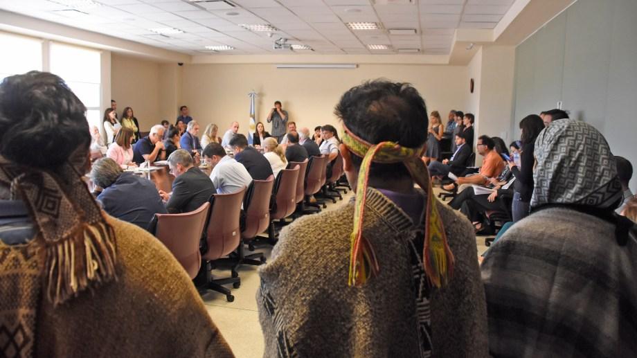 En diciembre pasado, las comunidades se manifestaron en la comisión de Medio Ambiente cuando se discutió una propuesta de modificación.
