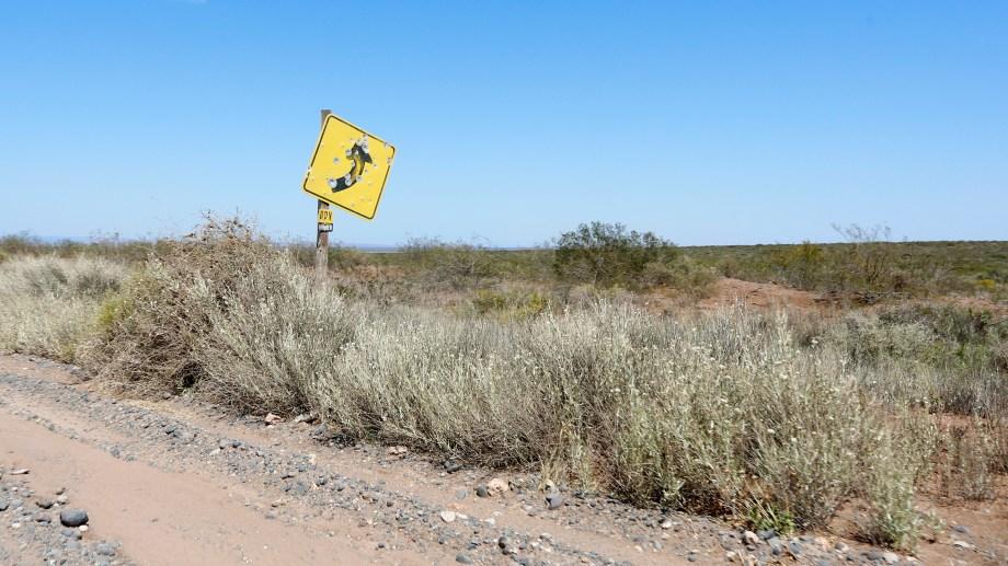 El lugar se ubica a unos 30 kilómetros al norte de San Patricio del Chañar. Foto Juan Thomes