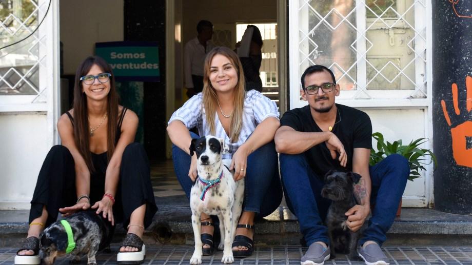 Las mascotas son bienvenidas en esta oficina. Los callejeros, también. Foto: Florencia Salto.