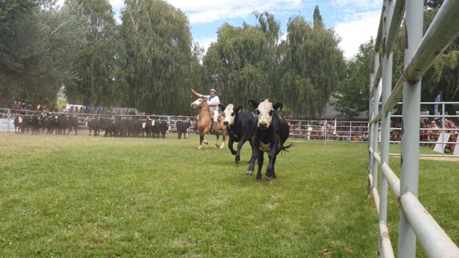 Con la presencia de las autoridades de la Sociedad Rural neuquina cerró una nueva edición de la convocatoria campera. Foto: Gentileza.