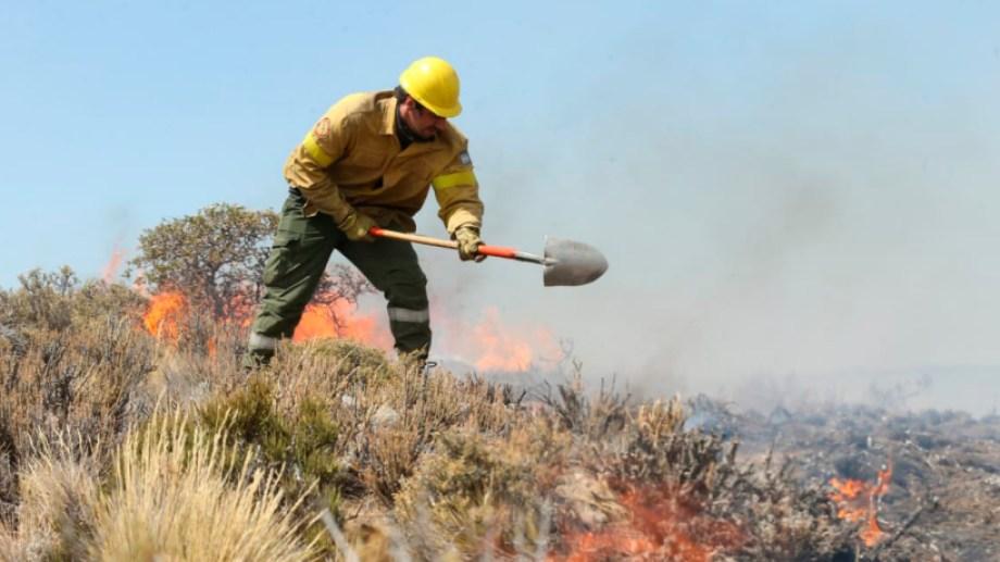 El incendio se desató a 17 kilómetros de Piedra del Águila y se tardaron tres días en poder controlarlo. (Gentileza).-