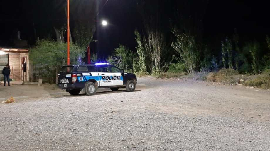 La Policía Federal secuestró plantas de marihuana en Cipolletti. (Foto: Gentileza)