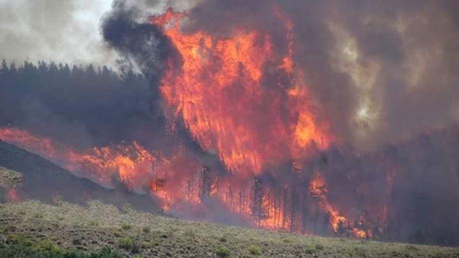 El incendio se produjo en el Cerro Corfone. (Foto: Gentileza FM Cordillerana.-)