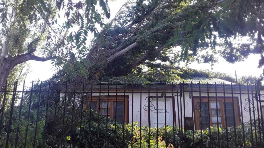 El fuerte viento desprendió techos de varias casas.