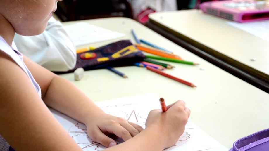 """""""No hay lugar más popular y habitado cotidianamente por la comunidad que una Escuela"""", explicaron desde ATEN para solicitar que se suspendan las clases. (Archivo Mauro Pérez).-"""