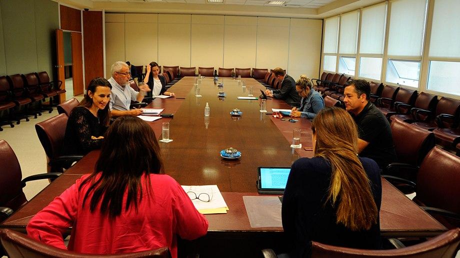 La comisión de medio ambiente fue la última que sesionó, el 18 de marzo, antes de que se decretara el aislamiento. Foto: archivo.