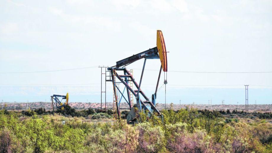 Alerta petrolera. El impacto del precio del crudo ya se nota en las cuentas públicas, y se advierte en su actividad económica. Foto: archivo.-