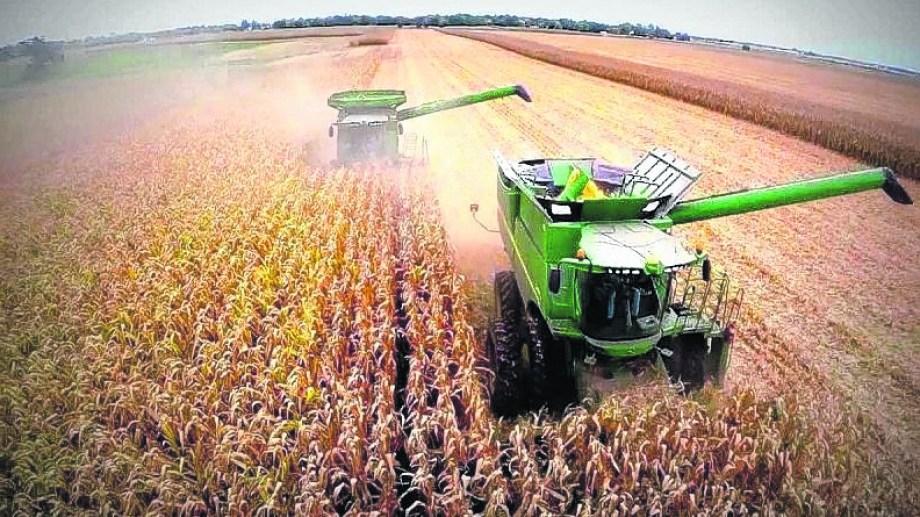 Hay rumores de aumento de retenciones y posible cierre de las exportaciones de maíz.