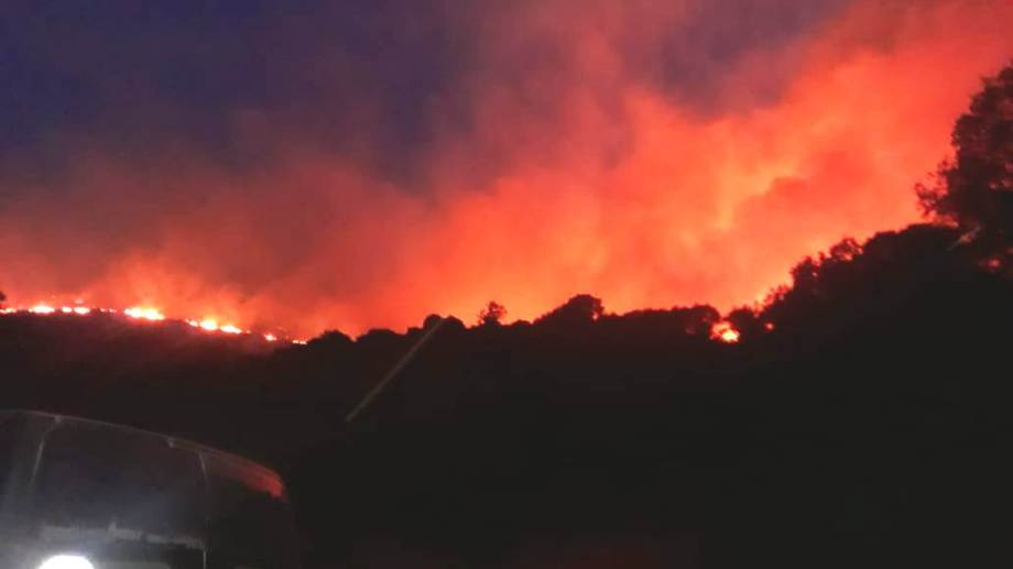 El incendio en la estancia Las Catalinas comenzó ayer a la tarde. (Gentileza).-