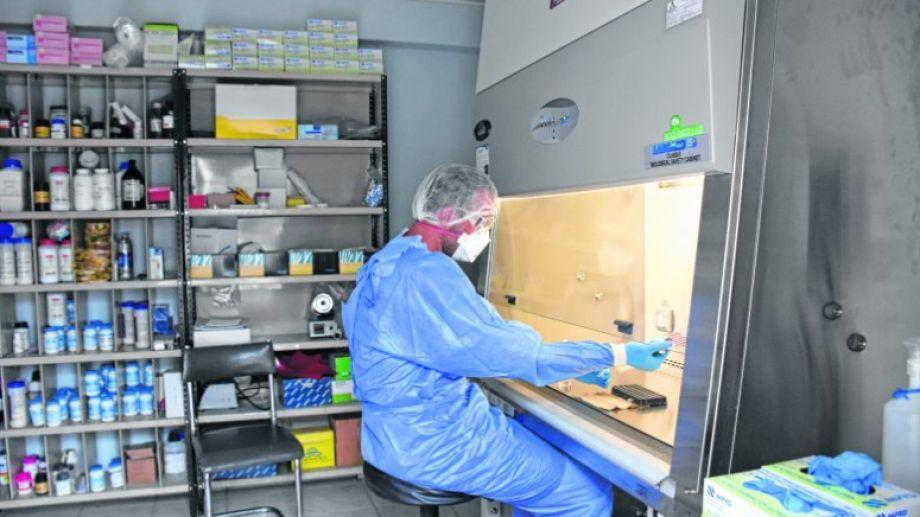 Desde el 20 de marzo Neuquén realiza los análisis de covid-19 en el laboratorio provincial. Foto: archivo Florencia Salto.